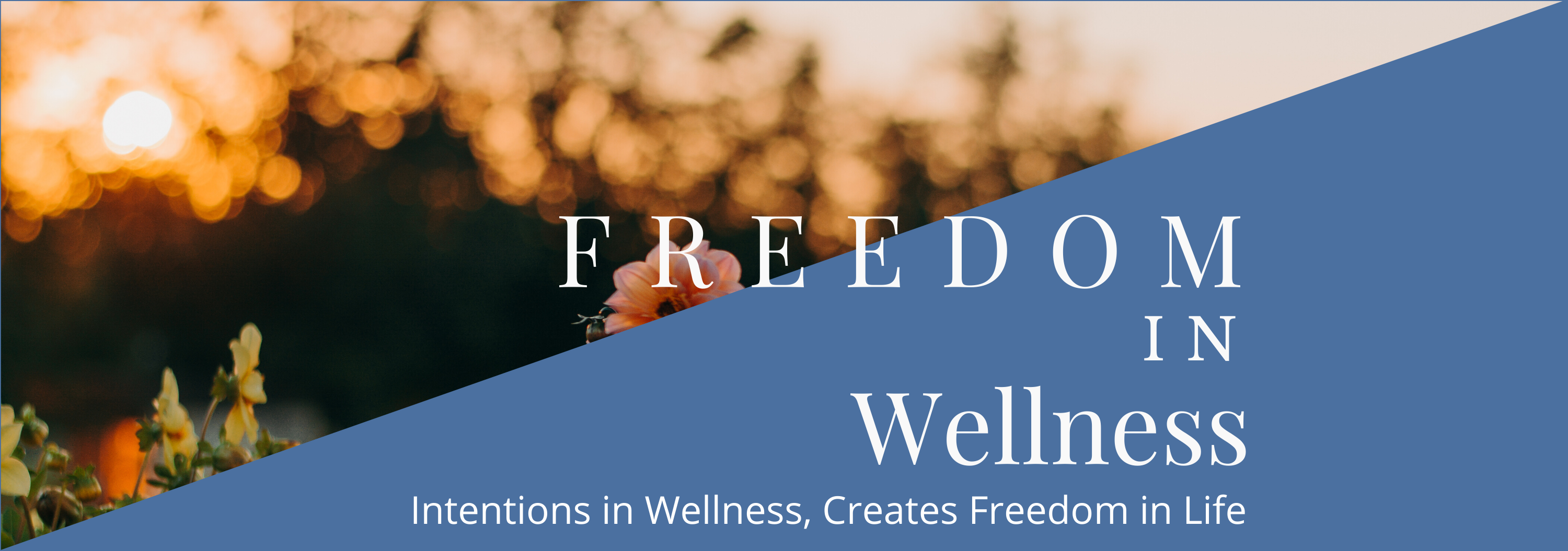 Freedom in Wellness
